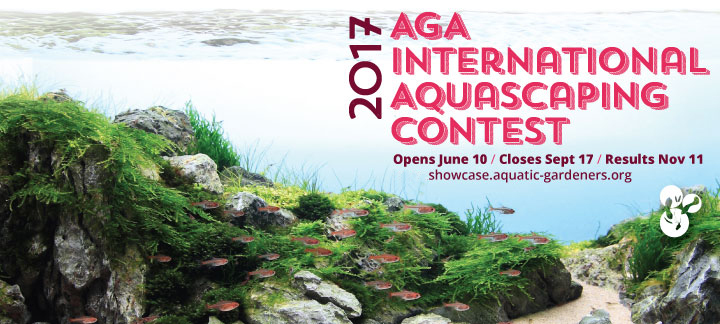 2017 AGA Aquascaping Contest